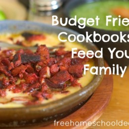 Feeding your family for cheap