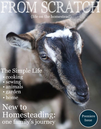FROM SCRATCH: Free Bi-Monthly Magazine for Modern Day Homesteaders