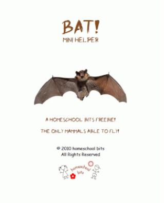 Free Bat Mini Unit Study