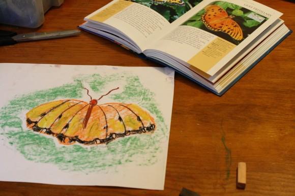 free butterfly chalk pastel tutorial