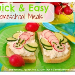 Quick and Easy Homeschool Meal Ideas {Homeschool Question of the Day}