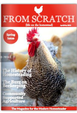 free homesteading magazine