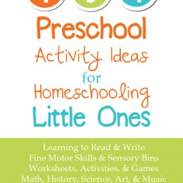 134 Preschool Activity Ideas for Homeschooling Little Ones