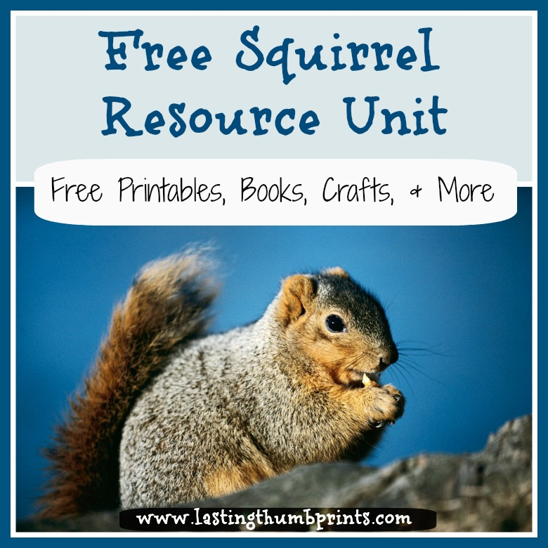 Free Homeschool Resources About Squirrels