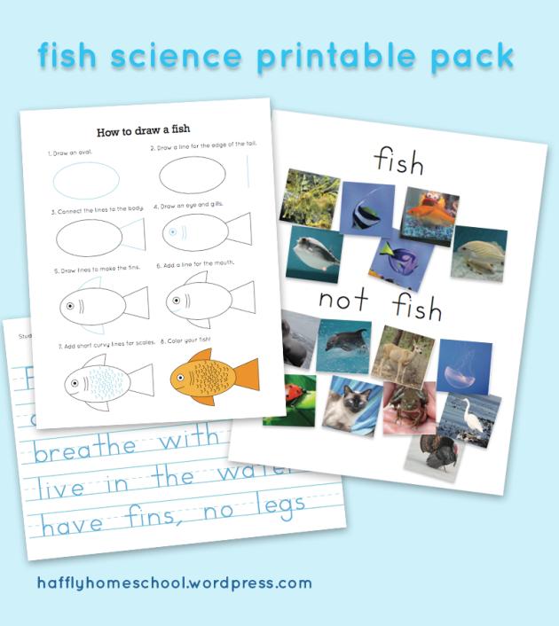 Free Fish Science Printables