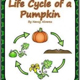 Free Pumpkin Life Cycle Writing Printables
