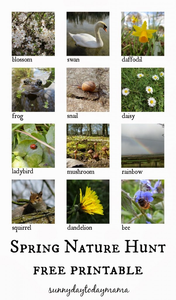 Spring Nature Hunt Printable
