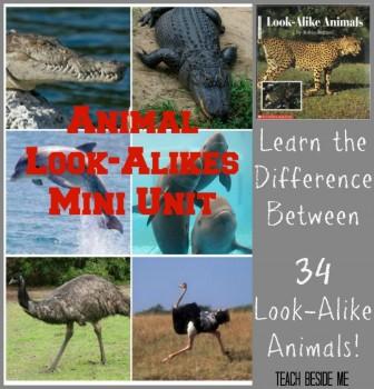 Look-Alike-Animals-mini-unit-984x1024