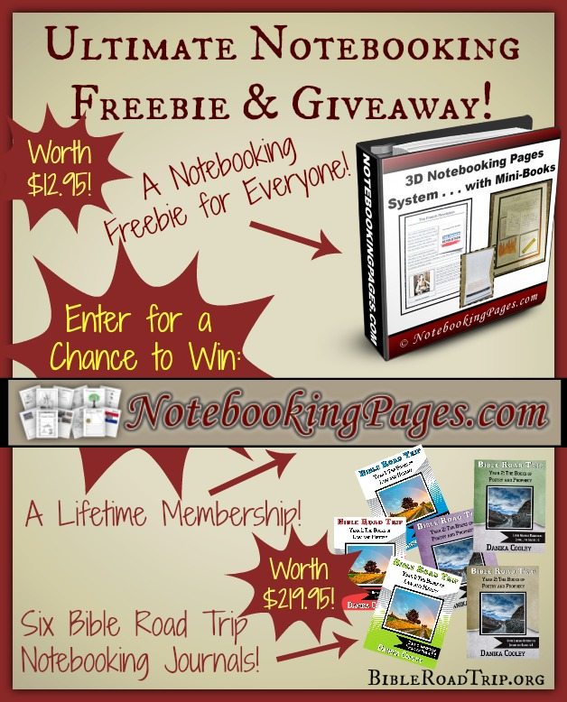 free 3d notebooking system
