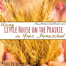 Using Little House on the Prairie in Your Homeschool