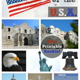 FREE USA Guide