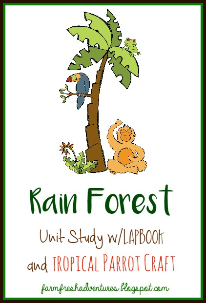 cFREE Rain Forest Lapbook