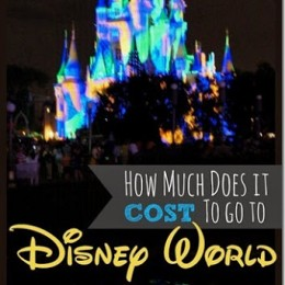 Cost for Disney