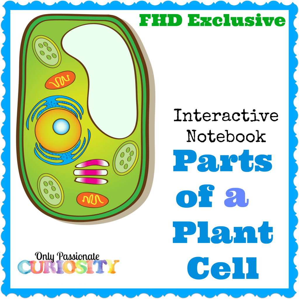 Free Plant Cell Interactive Notebook Instant Download Homeschool Deals This Cells Pack Is Perfect For Kids In Fourth To Sixth Grades