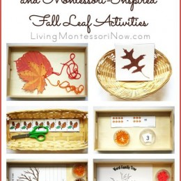 FREE Fall Leaf Activities and Printables