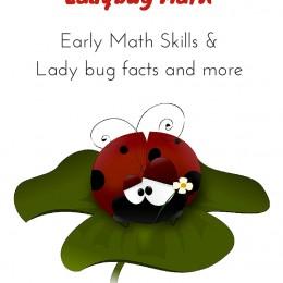 FREE Ladybug Math