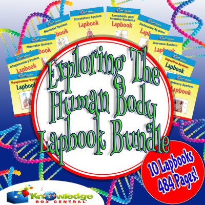 Exploring the Human Body Lapbook Bundle Only $6.75! (Reg. $30!)