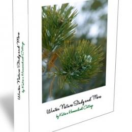 Winter Nature Study Only $3.25! (Reg. $9.50!)
