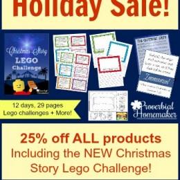 25% Off Christmas & Bible Lego Challenges