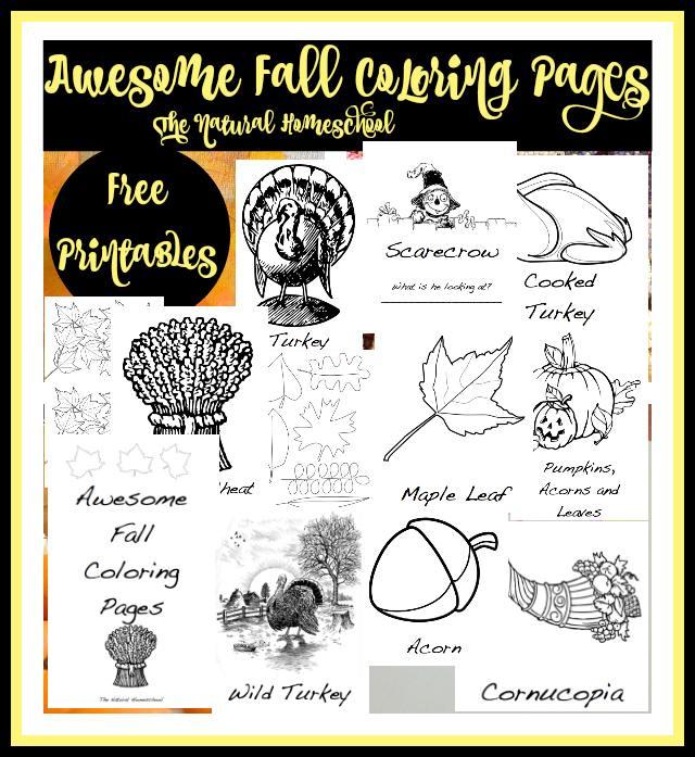 FREE Thanksgiving pack
