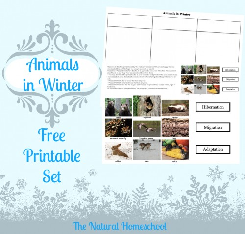 FREE Animals in Winter Printable