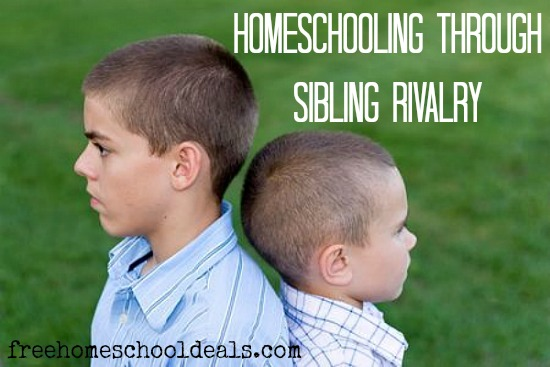 Homeschooling-Through-Sibling-Rivalry