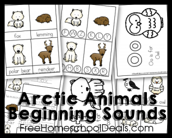 FREE Arctic Animals Beginning Sounds Pack (Instant Download!)