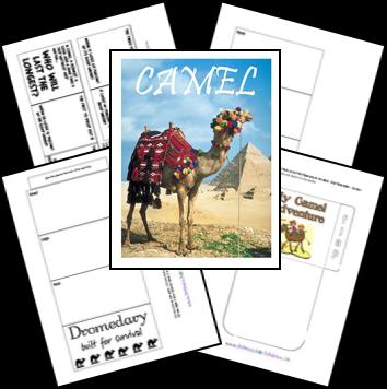 FREE Camel Lapbook