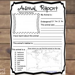FREE Animal Report Form