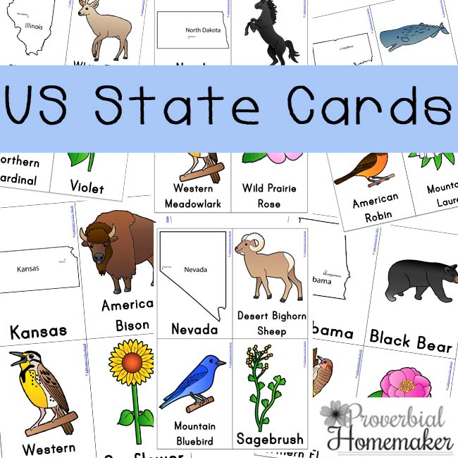 Free U.S. State Cards Pack