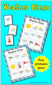 FREE Weather Bingo Printables
