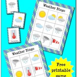FREE Weather Bingo Printables