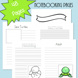 FREE Sea Turtles Notebooking Pages