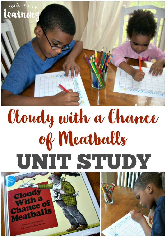 FREE Cloudy with a Chance Unit Study