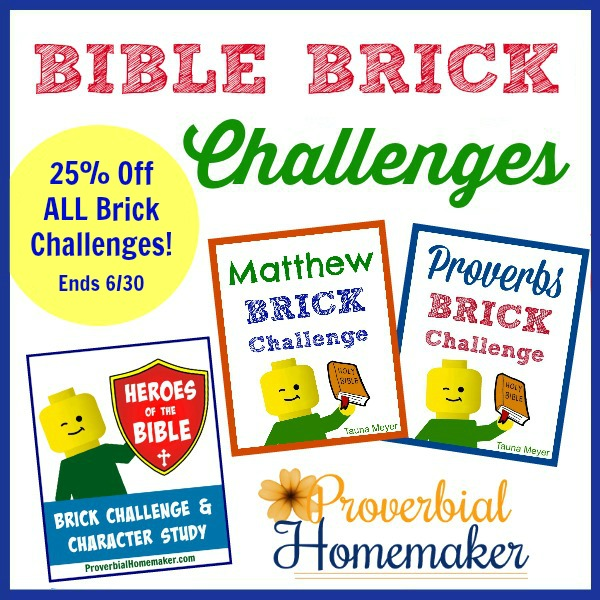 25% Off Bible Brick Challenges