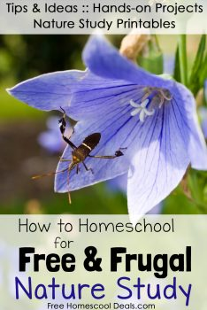 How to Homeschool for Free and Frugal: Nature Study Resources