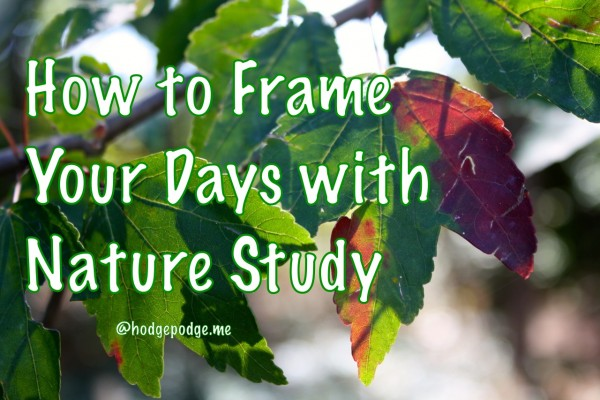 How to Frame Your Days with Nature Study