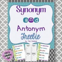 Synonym and Antonym Freebie