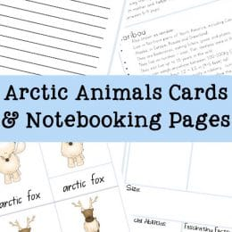 FREE Arctic Animal Cards and Notebooking Pages