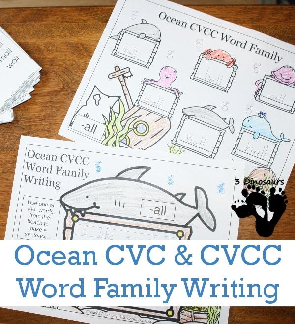 FREE Ocean CVC & CVCC Word Family Pack