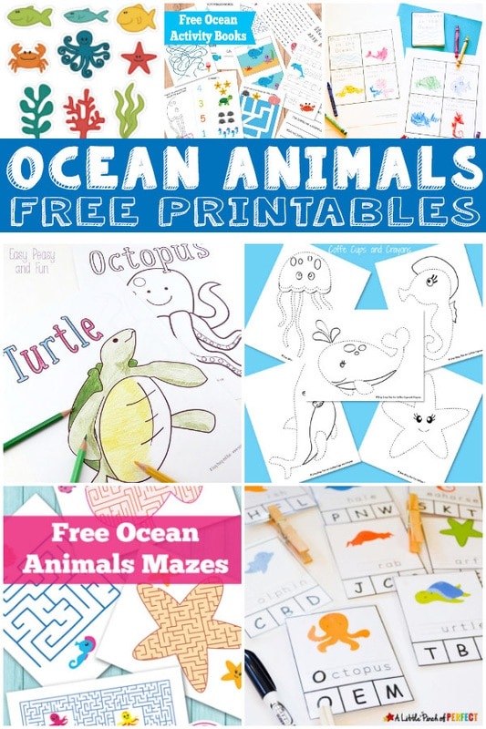 FREE Ocean Animals pack