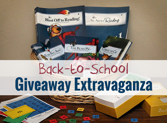 Homeschool Giveaway: All About Reading Level 1 + Deluxe Interactive Kit