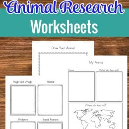 FREE Animal Research Worksheets