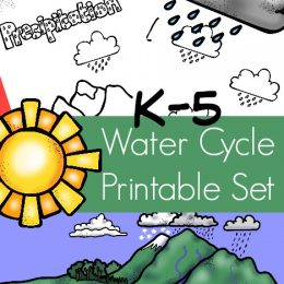 FREE Water Cycle Printables