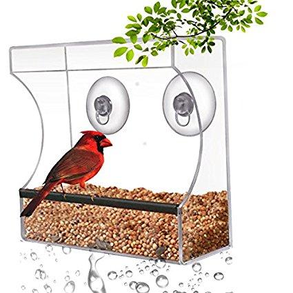 Clear Window Bird Feeder Only $16.72! (Reg. $22!)