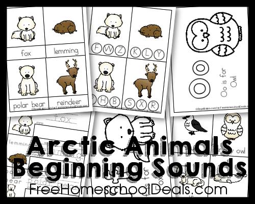 Arctic Animals Mini Pack