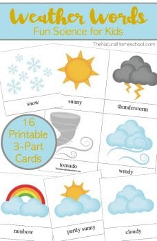 Free Weather Words 3-Part Cards