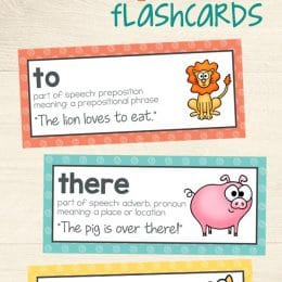 Free Homophone Flashcards