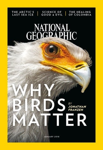 National Geographic Magazine Only $19/Year! (73% Off!)