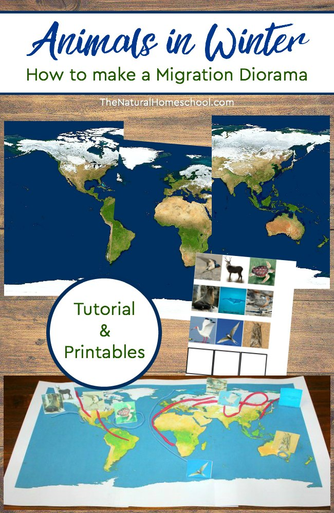Free Animal Migration Diorama Printables